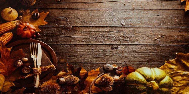 18 November Lawn & Garden Tips