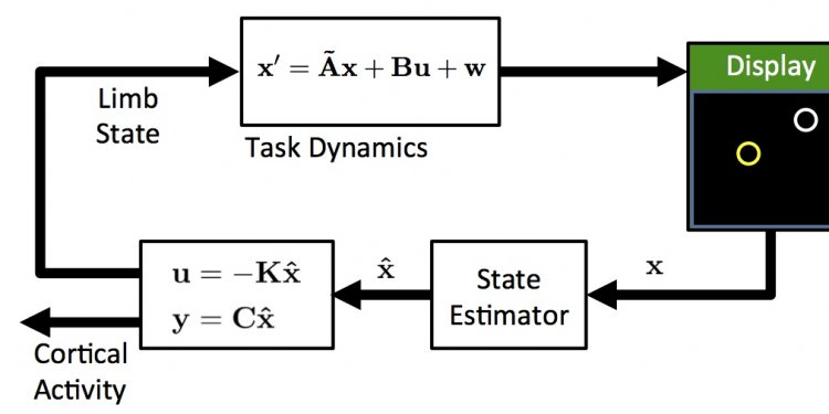 Closed-loop diagram of