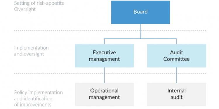 Objectives of internal control systems
