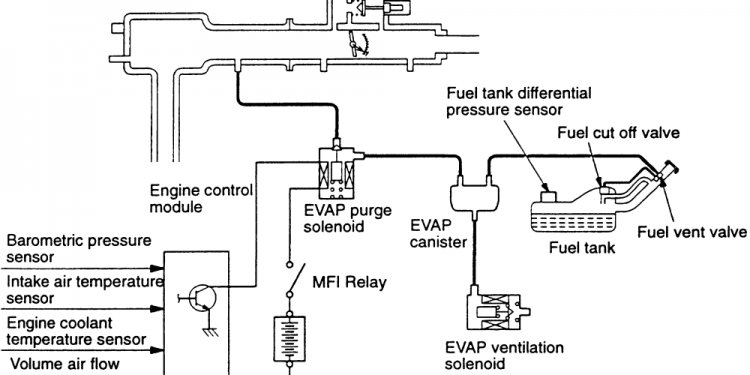 How to Fix Evaporative Emission Control system?