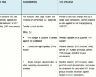 Internal control system Examples