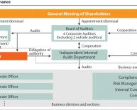 Internal control system in an organization